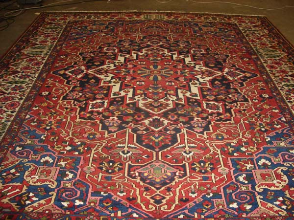 Anatolia Floral Rug - Size: 9' x 12'- Safavieh-For the Home-Rugs